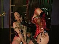 Mistress disciplines her slave