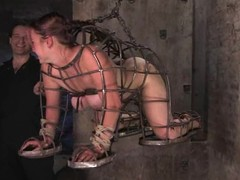 Randy newborn gets hogtied and vibrated deep wide her snatch